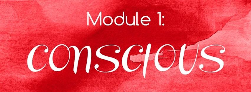 Module 1: CONSCIOUS